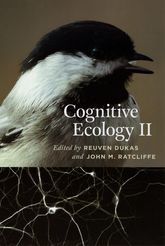 Cognitive Ecology II